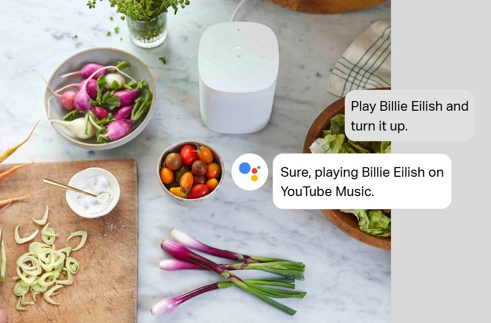 Sonos speaks OK Google