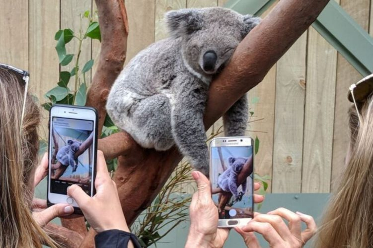 Australian 5G experience